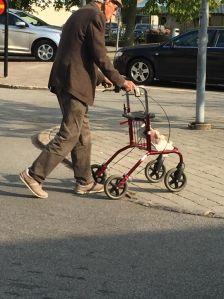 En röd rollator